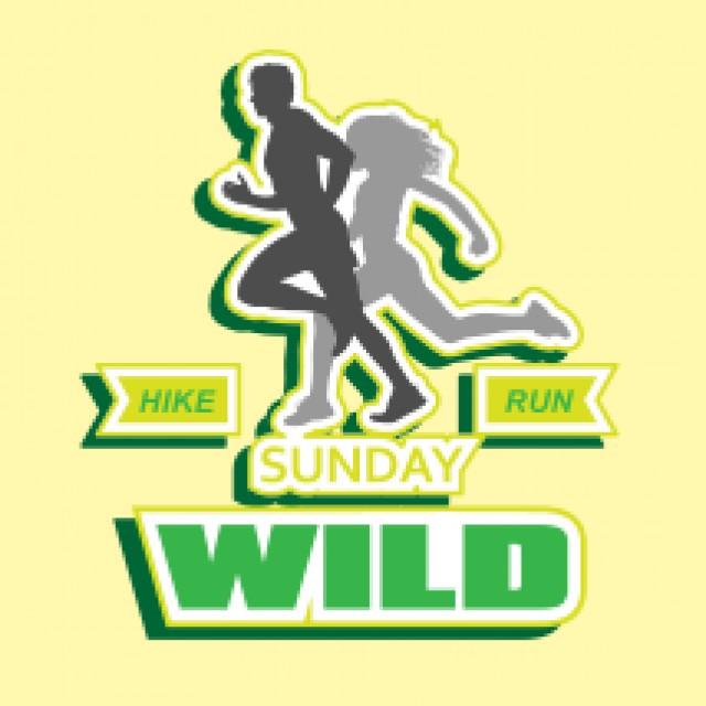 Wild Sunday Hike & Run 野.拜日遠足及跑步賽 2020