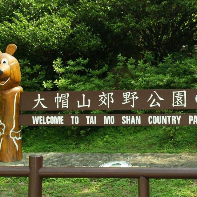 Tai Mo Shan Mini Trail 迷環大帽山
