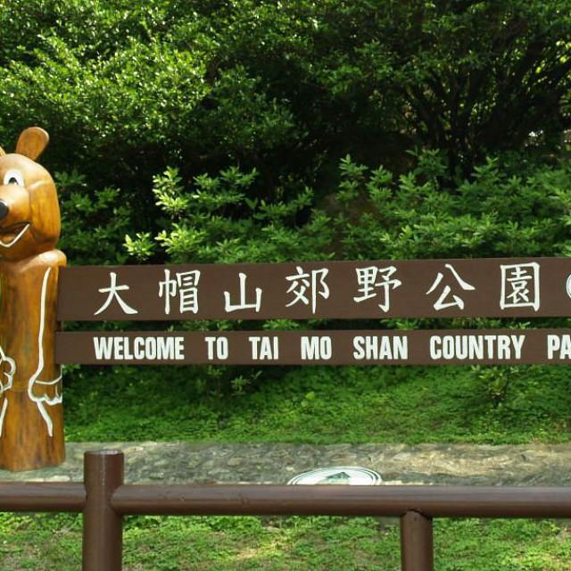 Tai Mo Shan Mini Trail 迷環大帽山 2020